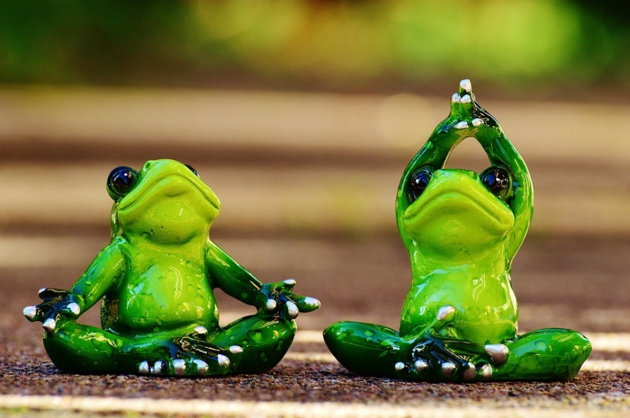 frogs-1030278_960_720