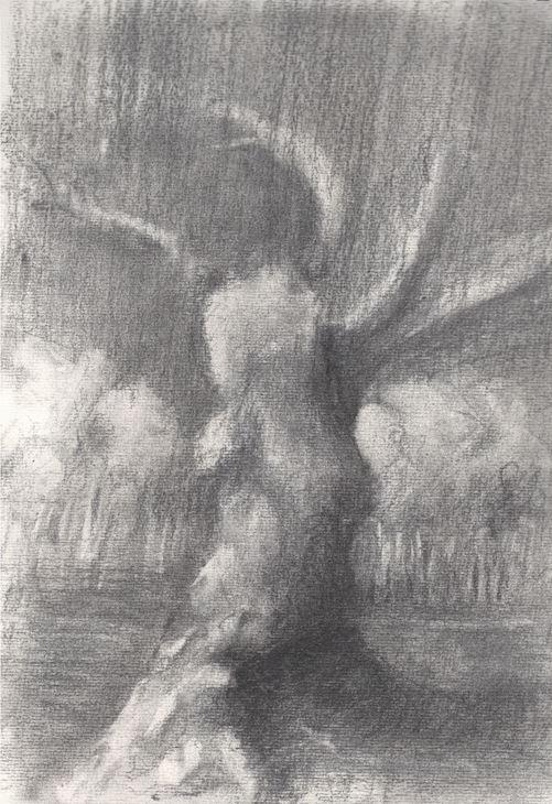 landscape-2014-charcoal-on-paper